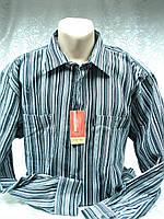 Рубашка Versani вельветовая классика 46 ворот