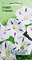 """Семена цветов Ипомея пурпурная Старшайн, однолетнее 1 г, """" Елітсортнасіння"""",  Украина"""