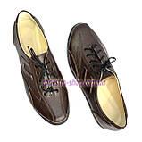 Туфли женские кожаные на шнурках, цвет коричневый, фото 6