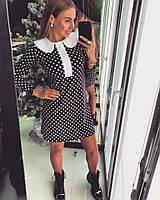 Платье Doratti в горошек с белым велюровым воротником мини трикотаж SMdor1140
