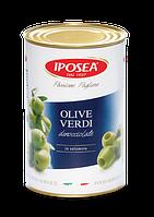 IPOSEA Olive verdi denocciolate - Оливки зеленые без косточки  4,1kg