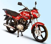 Легкий мотоцикл Qingqi Stranger 150, фото 1