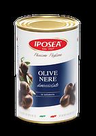 IPOSEA Olive nere denocciolate - Маслины черные без косточки  4,1kg