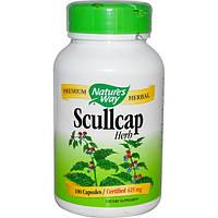 Scullcap Шлемник байкальский 425 мг 100 капс при ПМС климаксе от токсикоза приливов Nature's WayUSA