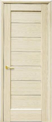 Модель Линея глухая межкомнатные двери, Николаев, фото 2