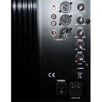 """12""""built-in amplifier"""