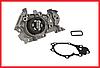 Насос водяной (помпа) 1.2/16V RUVILLE Dacia Logan 2, Sandero 2, Renault Clio 2-4, Kangoo 1/2, Symbol