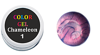 Гель-краска 5 мл(хамелеон)№1