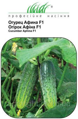 Огурец Афина F1, 10 семян, самоопыляемый Купить
