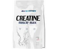 Creatine Muscle Max 1 kg