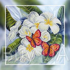 """Набір для вишивання бісером, картина """"Метелики"""" полотно 30*30 см"""
