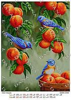"""Схема для вышивания бисером  """"Синие птички"""""""