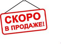 Ранец Рюкзак каркасный школьный отопедический EXPERT-C Скорпион магнитный замок EasyLock 1002891