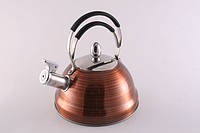 """Чайник из нержавеющей стали 2.3л для кипячения воды со свистком Fissman """"Cairo"""" (KT-5910.2.3)"""