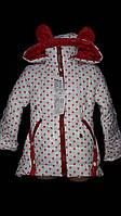 Демисезонная куртка девочке, белая в горошек, рост 92,98,104,116 см., 550/480 (цена за 1 шт. + 7