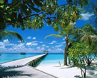Доминикана. Отдых в Доминикане
