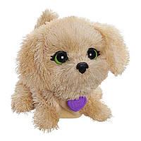 FurReal Friends Интерактивный поющая собачка Luvimals Sweet Singin' Biscuit Pet