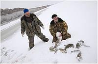 Советы рыбакам: где словить рыбу в феврале
