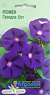 """Семена цветов Ипомея пурпурная Грандпа Отт, однолетнее 1 г, """" Елітсортнасіння"""",  Украина"""