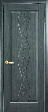 Модель Хвиля Гравірування міжкімнатні двері, Миколаїв, фото 2