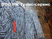 Хамса анчоусная оптом в Крыму от производителя ООО МК ТРАНС-СЕРВИС