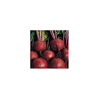 Бонел семена свеклы столовой окр. (Hazera) 1кг