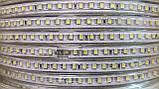 Світлодіодна стрічка smd 2835-120 220В IP68 біла Premium, фото 2