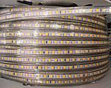 Светодиодная лента smd 2835-120 220В IP68 теплая, фото 2