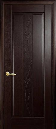Модель Премьера Гравировка межкомнатные двери, Николаев, фото 2