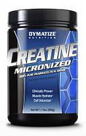 Креатин Creatine Monohydrate Dymatize 500 грамм