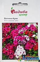 """Семена цветов флокс Огненный Шар, 0,2 г, """"Садыба центр"""",  Украина"""