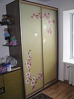 Шкафы купе с рисунком ручной работы