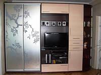 Шкафы-купе с пескоструйным рисунком№3