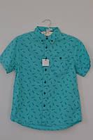 Голубая рубашка с ананасами