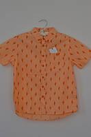 Оранжевая рубашка с кактусами