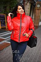 Красная демисезонная куртка. 5 цветов