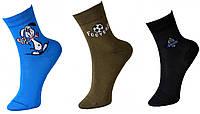 Детские носки демисезонные х/б Смалий, 33-35, 22 размер, ассорти