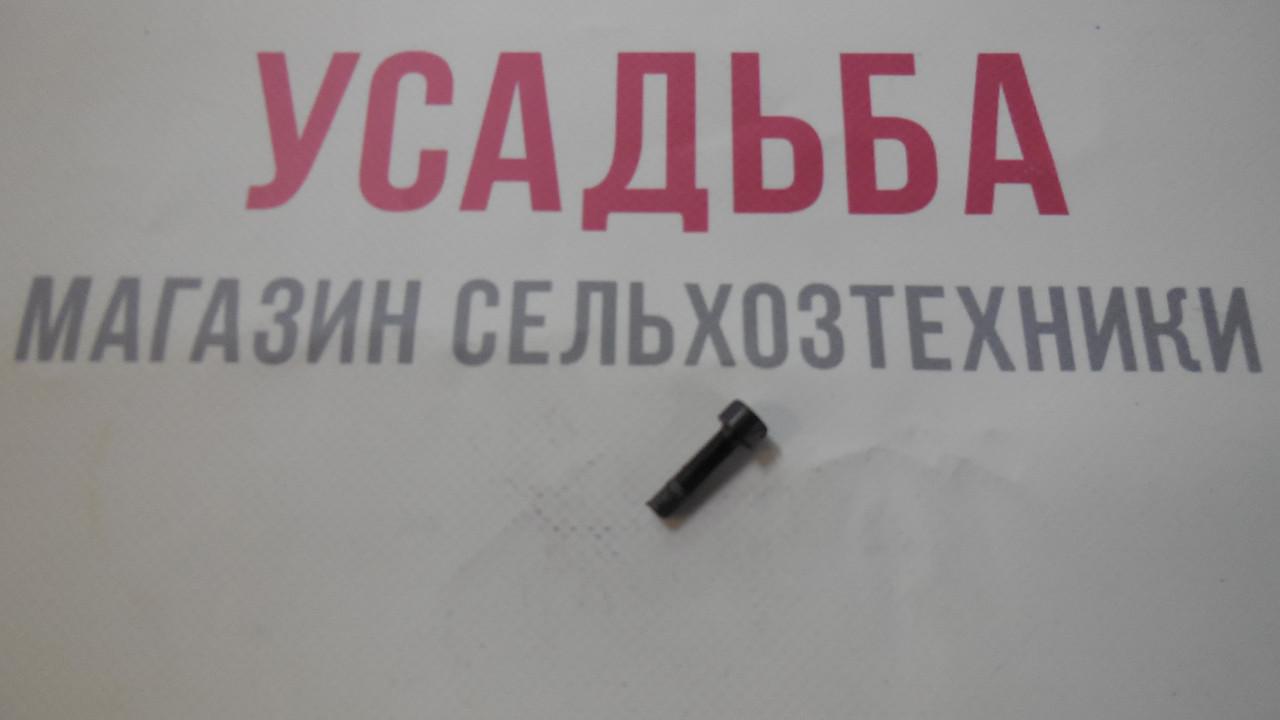Винт 5Х20 ZM415