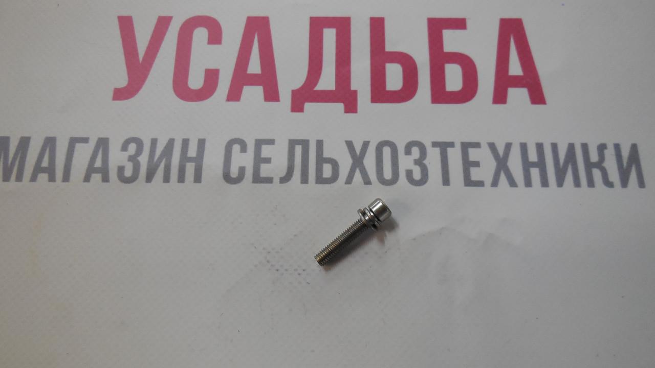 Винт 5Х25 ZM415