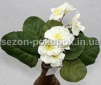 Букет фиалка (8 цветочков) Цвет - молочный Цена за букет