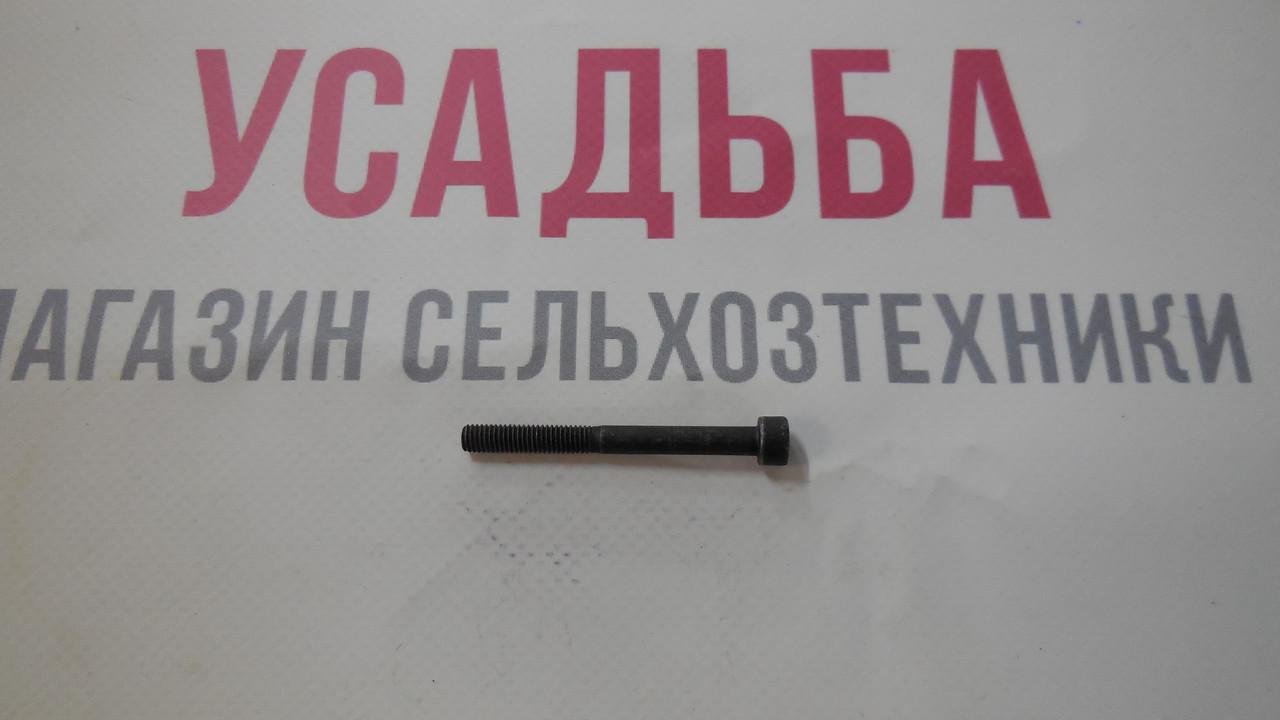 Винт 5Х50 ZM415