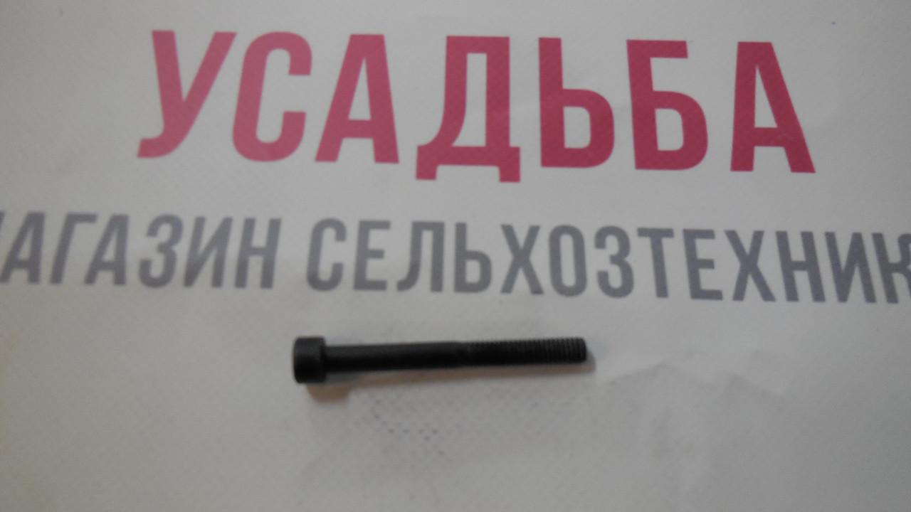 Винт 6Х55 ZM415