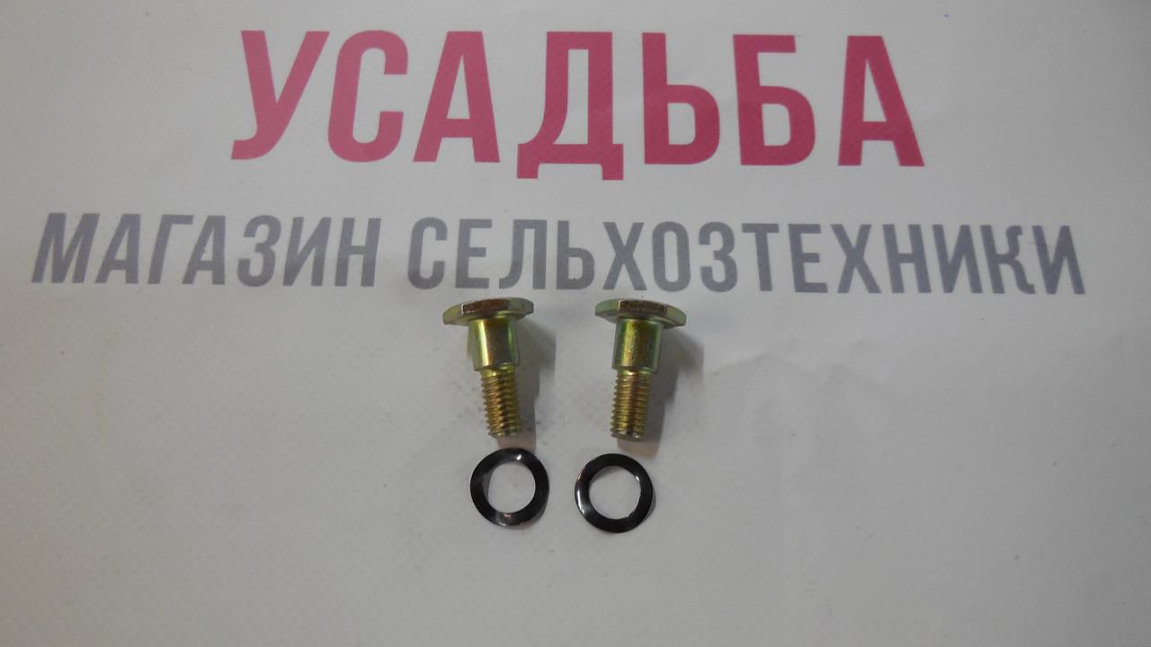 Винт диска сцепления мотокосы ZM415