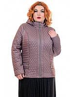 """Женская демисезонная куртка """"ЖАКЛИН""""   разные цвета"""