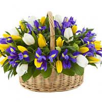 Корзина из тюльпанов