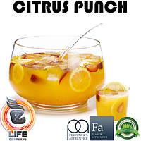 Ароматизатор TPA Citrus Punch Flavor (Цитрусовый пунш)