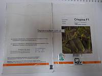 Семена огурца Криспина Ф1 100 семян (Nunhems/АГРОПАК+) — партенокарпик, ранний гибрид (38-40 дней)