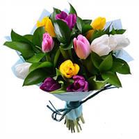 Букет из разноцветныйх тюльпанов 11 шт