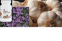 Чеснок - Тимьян, Форевер, США, Forever Garlic-Thyme®, 100 капсул