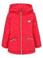Детская демисезонная куртка для девочки Тифани, красный, р.92-116